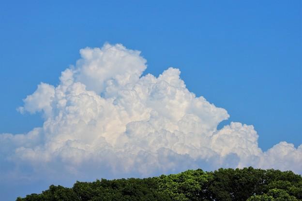 THE入道雲