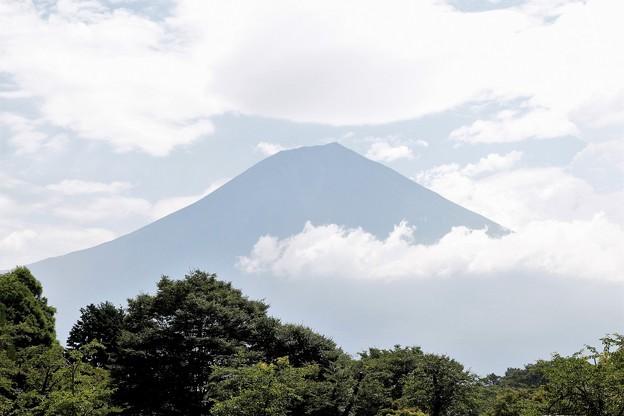 Photos: 曇天
