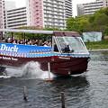 Photos: スカイダック