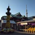Photos: 菊祭り