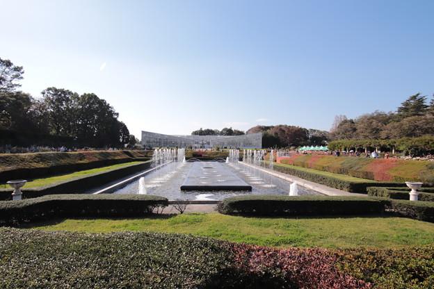Photos: 神代植物公園