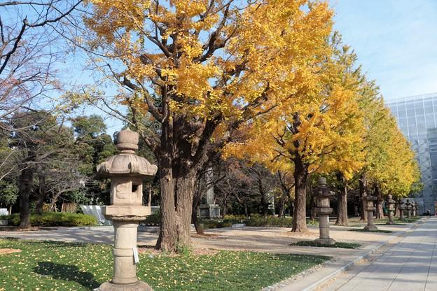 Photos: 靖国神社