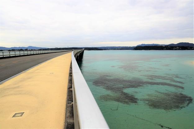 Photos: 沖縄本島