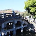 Photos: 鶴岡八幡宮