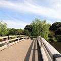 Photos: 新宿御苑