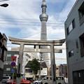 Photos: 牛嶋神社