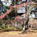 Photos: 南禅寺