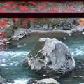 Photos: トロッコ列車