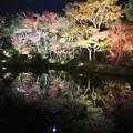 Photos: 高台寺