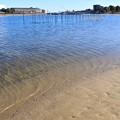 都内の浜辺