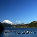 Photos: 芦ノ湖