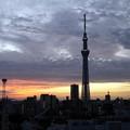 Photos: 朝日