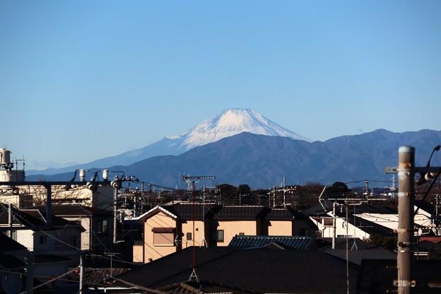 Photos: 2021初富士