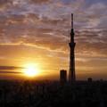 Photos: 日の出
