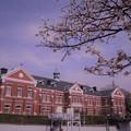 Photos: 北の丸公園