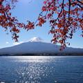Photos: 河口湖紅葉