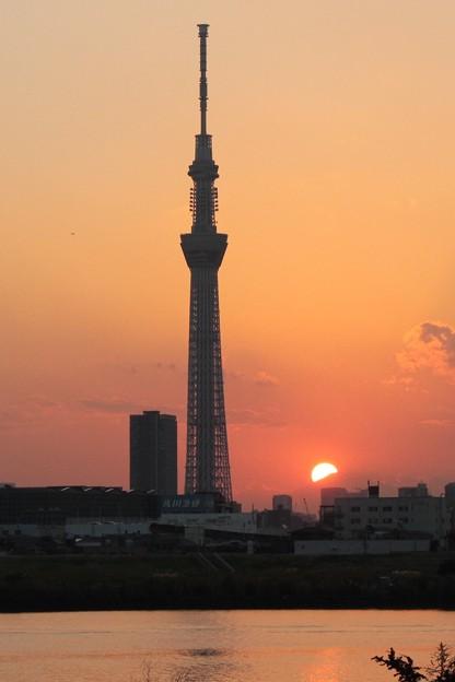 富士に沈む夕陽