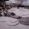 Photos: 石庭