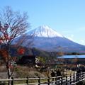 Photos: 里の秋