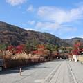 Photos: 天龍寺参道
