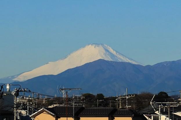 Photos: 真白き富士の嶺