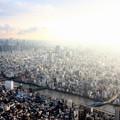 Photos: 西日