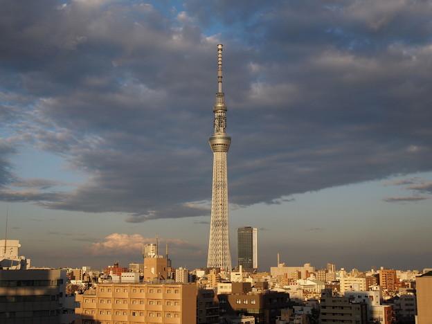 Photos: 秋の夕日