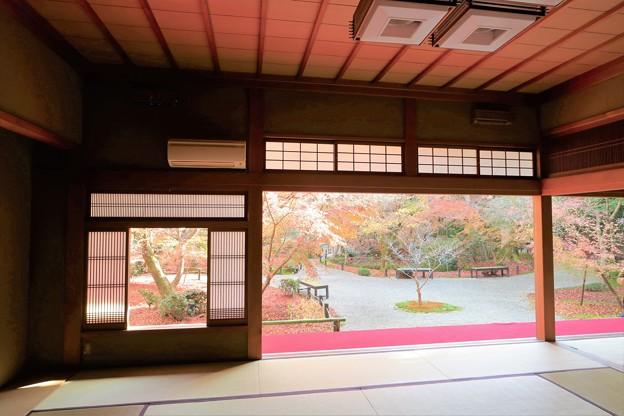 Photos: 京都