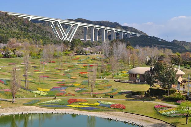 春・ポプラの丘の花風景