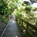 Photos: 由良要塞を巡る散策路