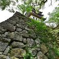 本丸天守台の石垣