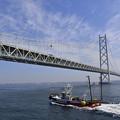 明石海峡大橋と漁船