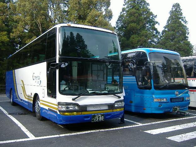 エルム観光バスと霧島交通観光の並び