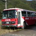 写真: 鹿22く・138
