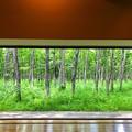 写真: 十勝の窓