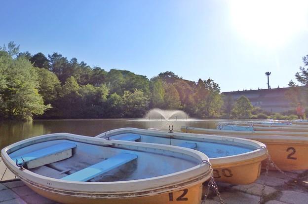 緑ヶ丘公園の池とボート