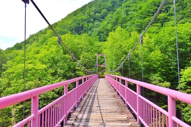 ピンクの吊橋