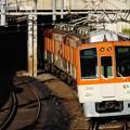 Photos: 阪神8000系 8243F