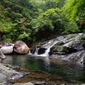 十津川村の渓流