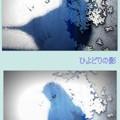 写真: ヒヨちゃんの影