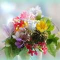写真: 春の花束~