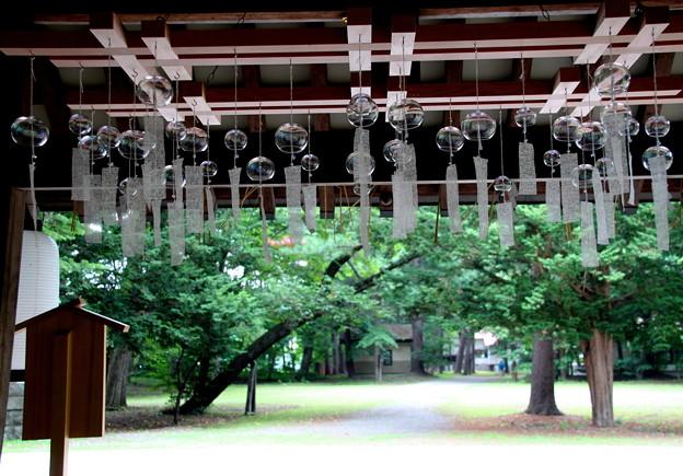 Photos: 夏詣の始まり。