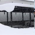 Photos: 2021 冬