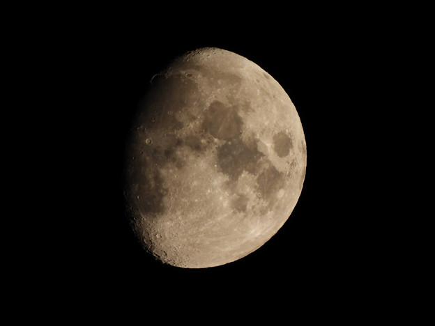 Photos: 月齢10.0(高倍率コンデジ試し撮り)