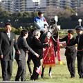 第52回 デイリー杯クイーンカップ 口取り(17/02/11・東京競馬場)
