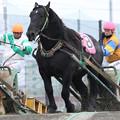 写真: ディーステンルネ レース(17/11/26・3R)