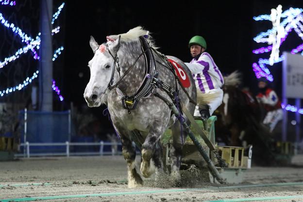 キサラキク レース(18/01/21・第28回 ヒロインズカップ)