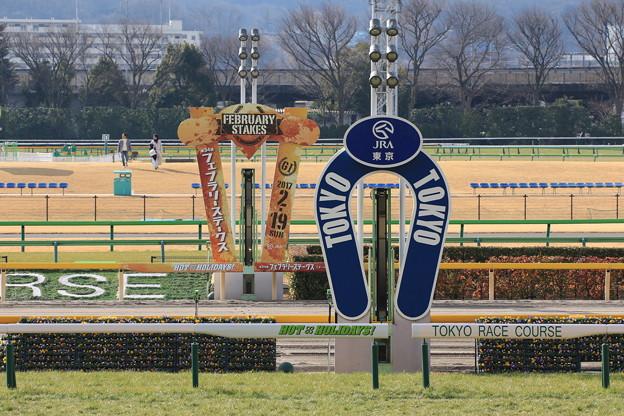 東京競馬場 ゴール板(17/02/05)