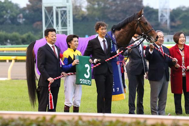 第22回 東京スポーツ杯2歳ステークス 口取り(17/11/18)