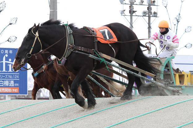 オレノココロ レース_2(13/03/16・5R)